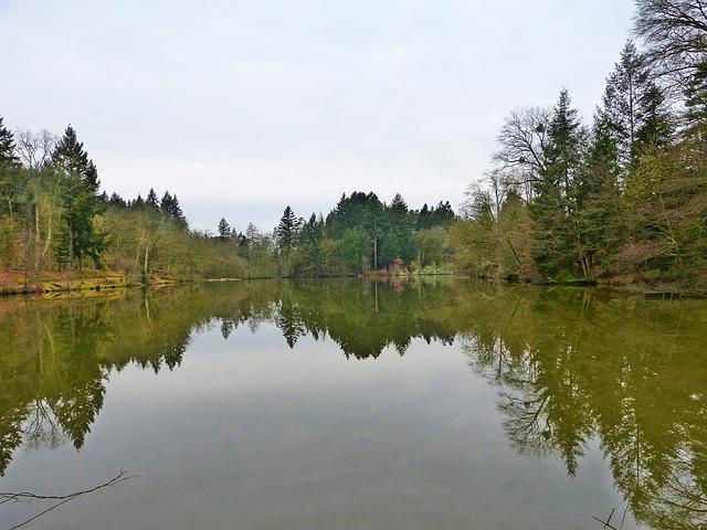Arboretum de Pézanin à Dompierre-les-Ormes (71)