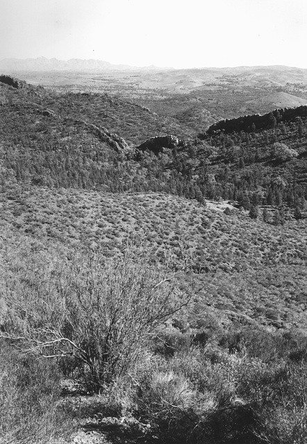 Loves Mine Range, Flinders Ranges
