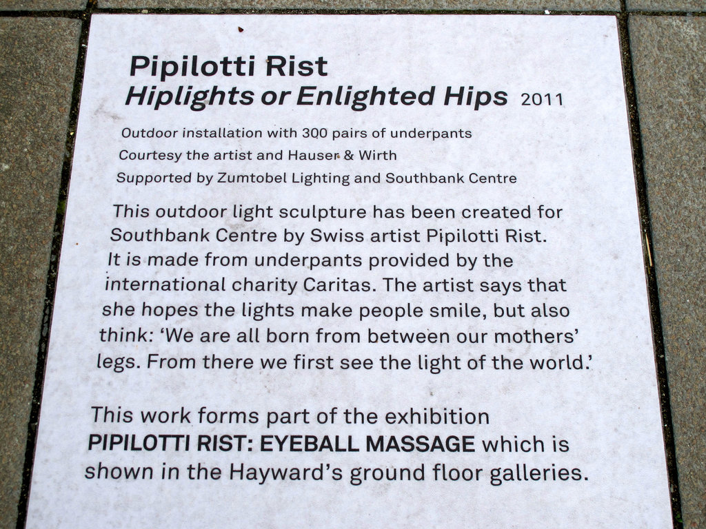 Pipilotti Rist Hiplights