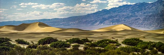 Death Valley Dunes, April 1980 (000°)
