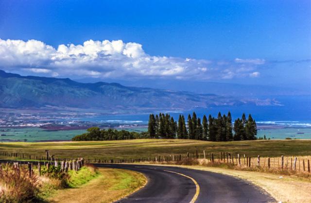 Haleakala Highway, Maui Dec. 1980 (300°)