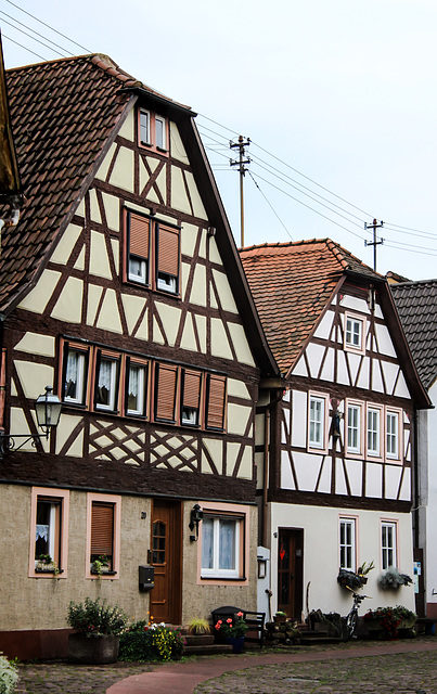 Half-timbered traditional Houses