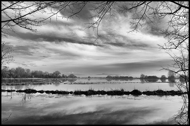 Flooded fields in winter light - 4