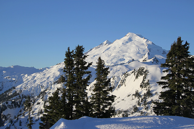 Mount Baker from Artist's Point