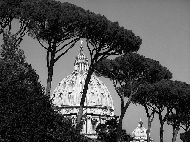 St. Peters backside - view from the Viale Vaticano