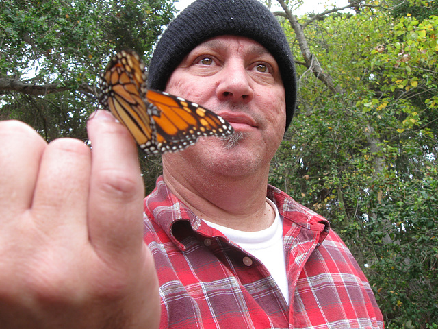 Butterfly & Buddy