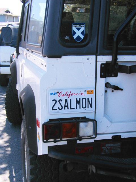 2SALMON (p6120964)
