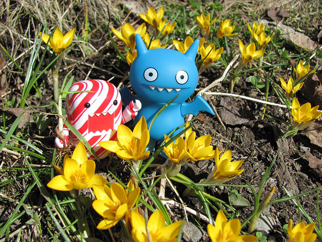 Icy and Domo search for spring 5/5