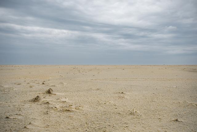 Mini-Landschaft - 20130515