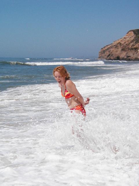 Cowell Ranch Beach (p8242487)