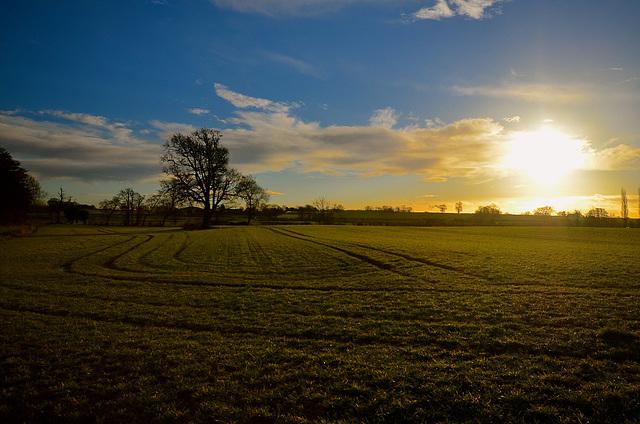 Sunrise over Staffordshire Fields