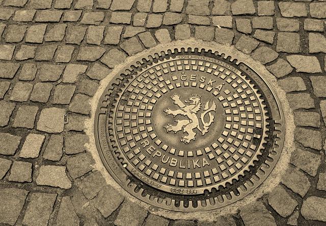 drain cover mono