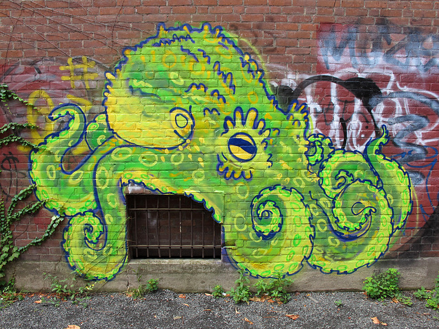 Octopus Revisited