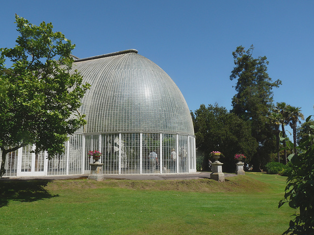 Bicton Gardens- The Palm House