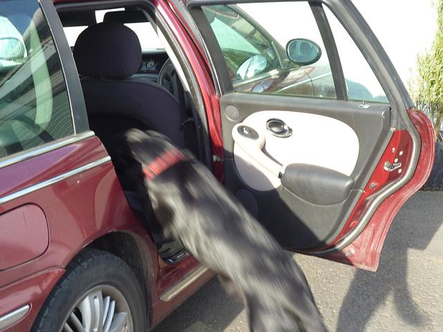 BDD - getting in the car