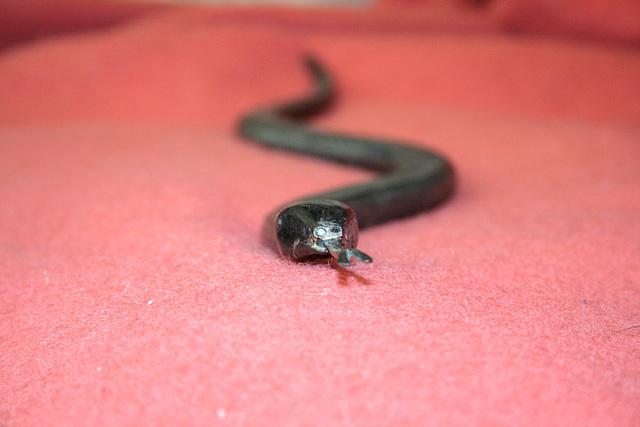 Forged metal rasp snake