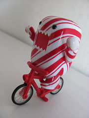 Bicycle Domo