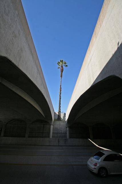Santa Barbara (2133)
