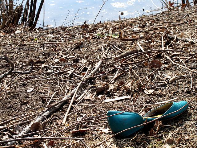 Lost Blue Shoe