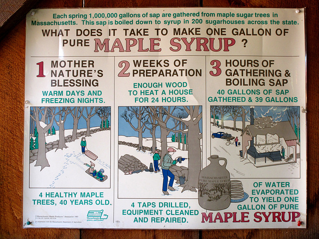 What It Takes to Make Maple Syrup