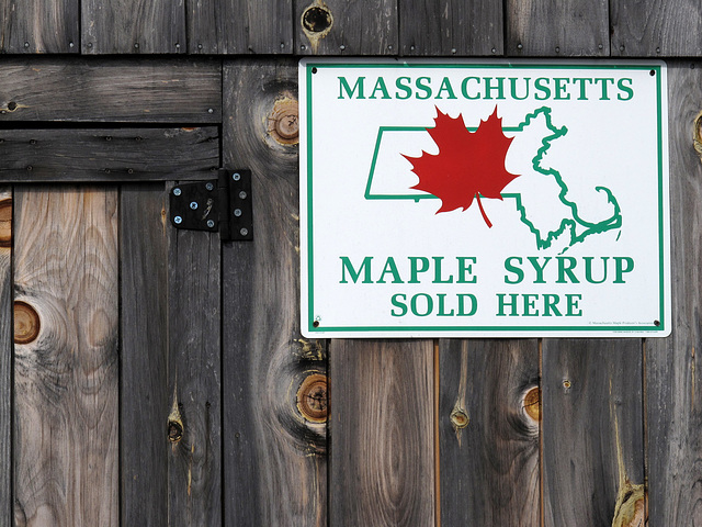 Maple Syrup Sold Here