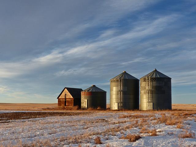 Love Alberta