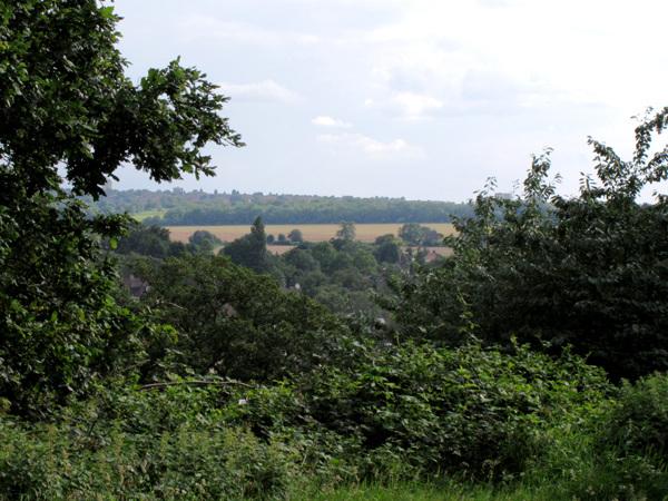 Looking across Kent
