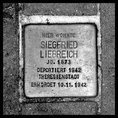 Stolperstein Siegfried LIEBREICH (colored version included)