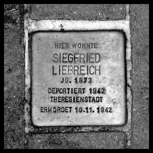 Stolperstein Siegfried LIEBREICH (colored version included)
