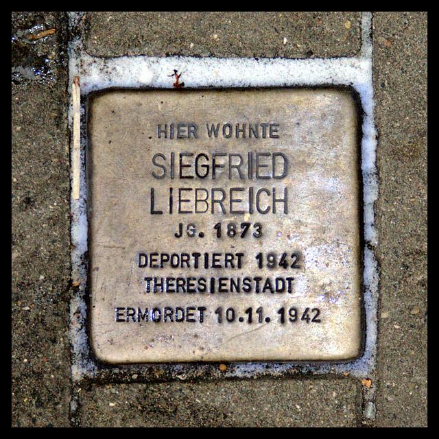 Stolperstein Siegfried LIEBREICH