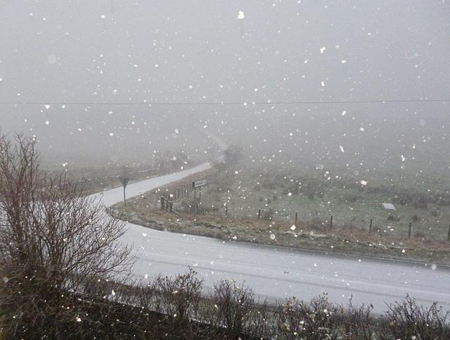 gbww - first snow