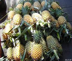Tas d'ananas