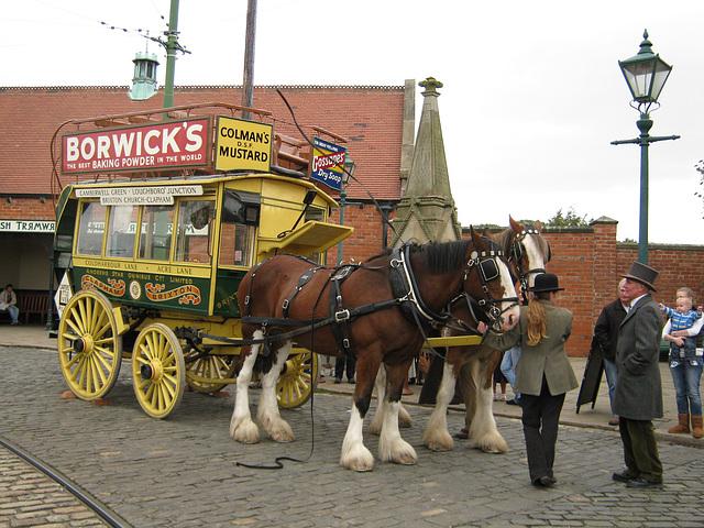 BM - eve - Horse 'bus
