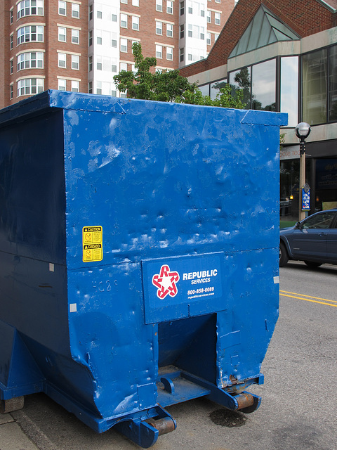 "This one's called ""Blue Dumpster's Surface's Dents."""