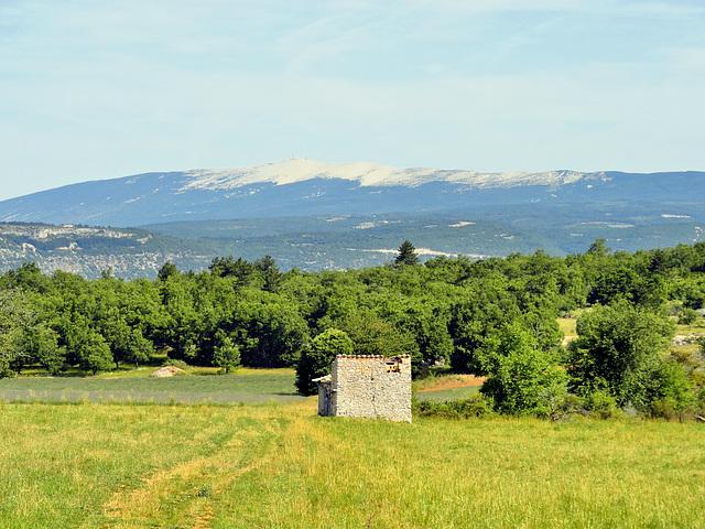 Haute Provence, view on the Mont Ventoux