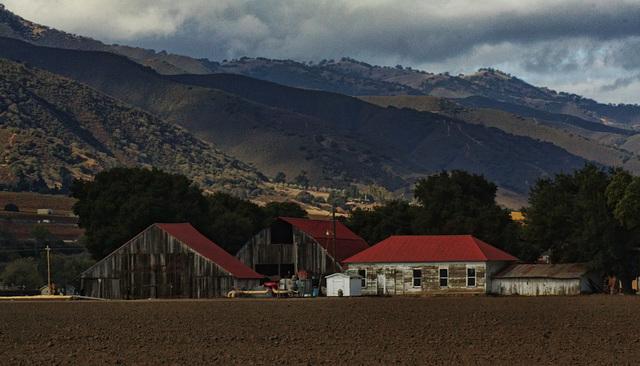 Wills Farm