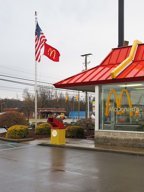 Having trouble with a sopping wet flag clinging to a flagpole at McDondleods.