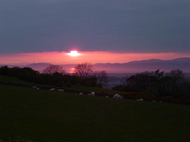 gbw - D&G sunset