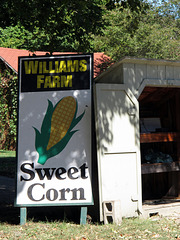 Williams Farm Sweet Corn