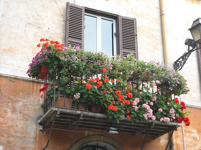 Balcone con gerani