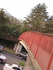San Francisco (pb221227)