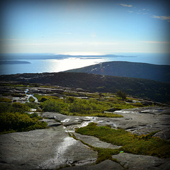 View from Mount Cadillac.