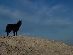 20140722 Fee Mt Baudille (37) al