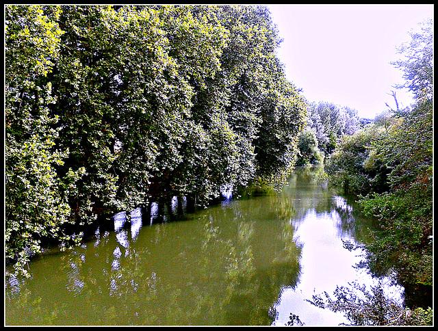 Pamplona: río Arga
