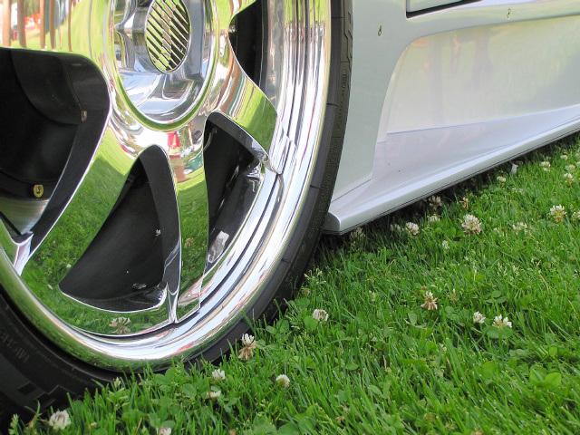 Lawn Mower (p6250733)