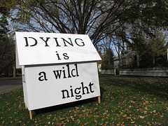 Dying is a wild night