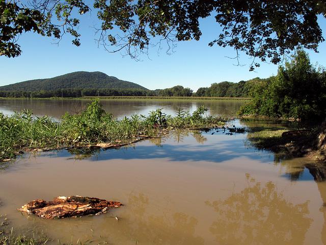 Flooded Fields of Hadley