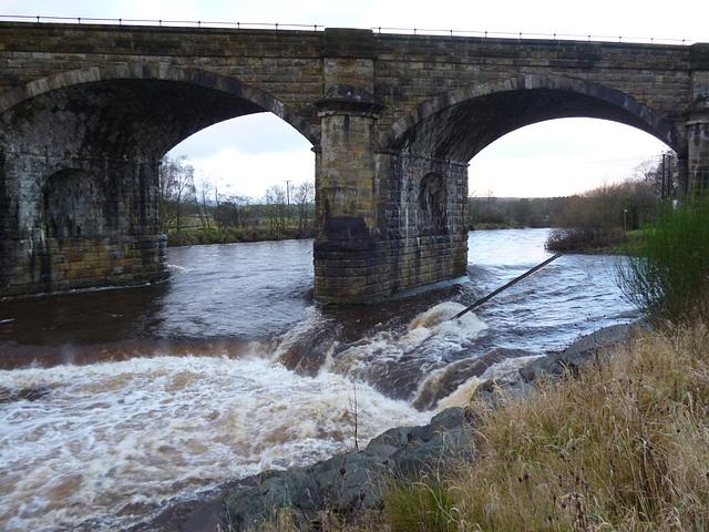 gbw - it was raining upstream