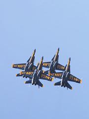 Blue Angels (pa071629)