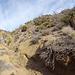 Long Canyon (01059)